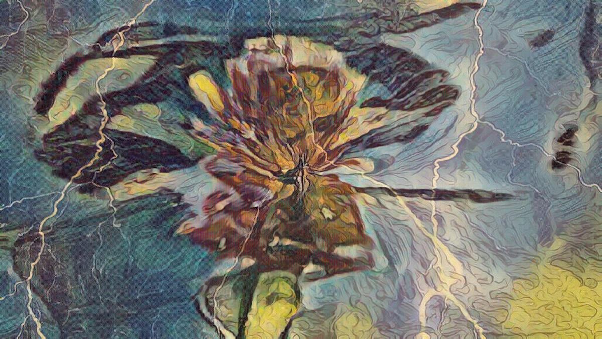 Abstract digital art, suggesting a flower in a pond, by Tucker Lieberman