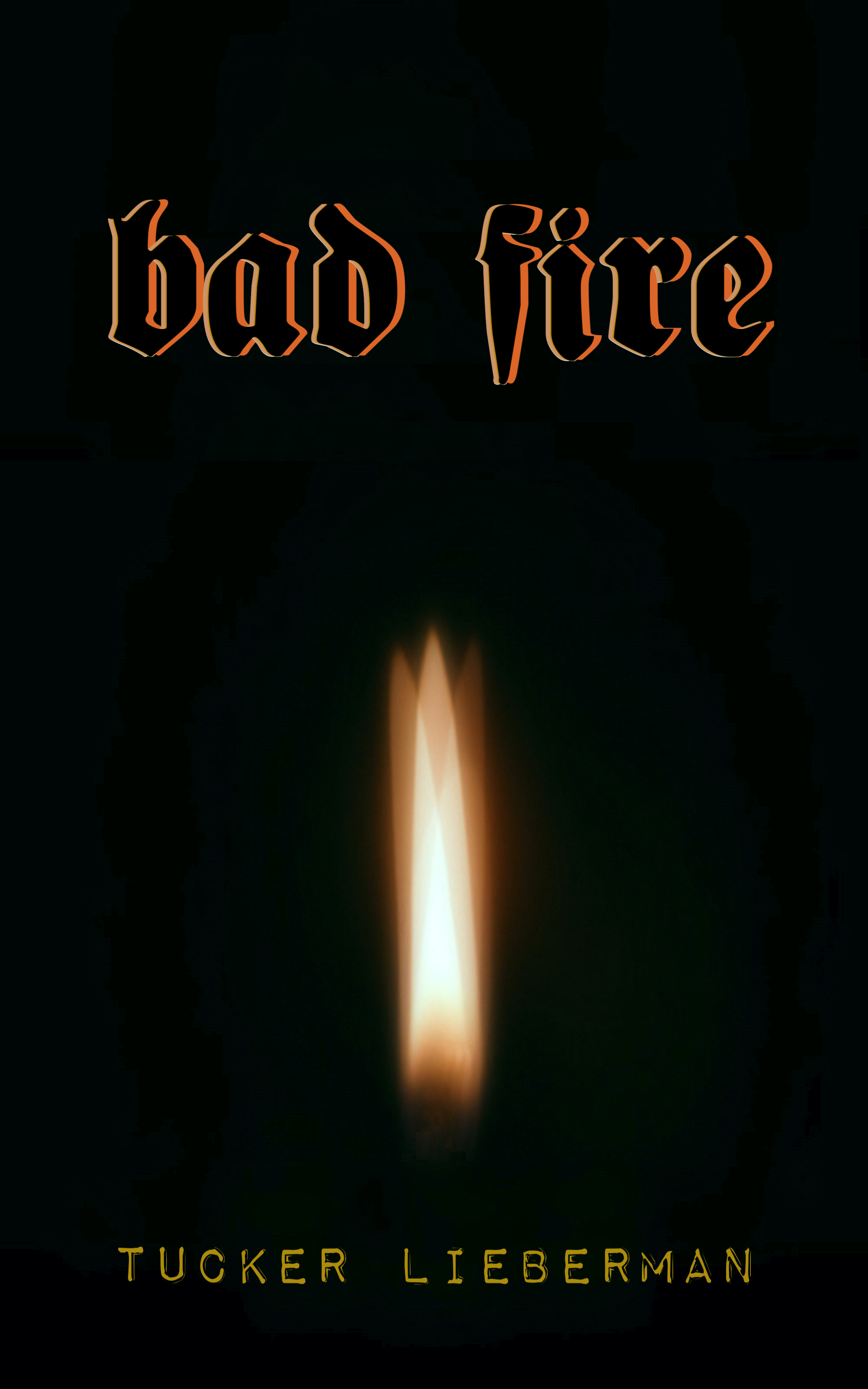Cover image of Bad Fire by Tucker Lieberman